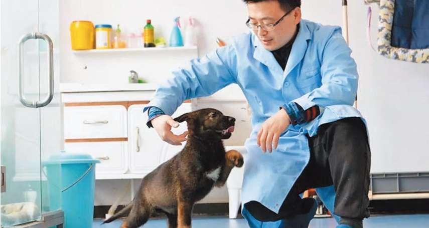 量產「警犬中的福爾摩斯」,可能嗎?中國首隻基因複製警犬曝光