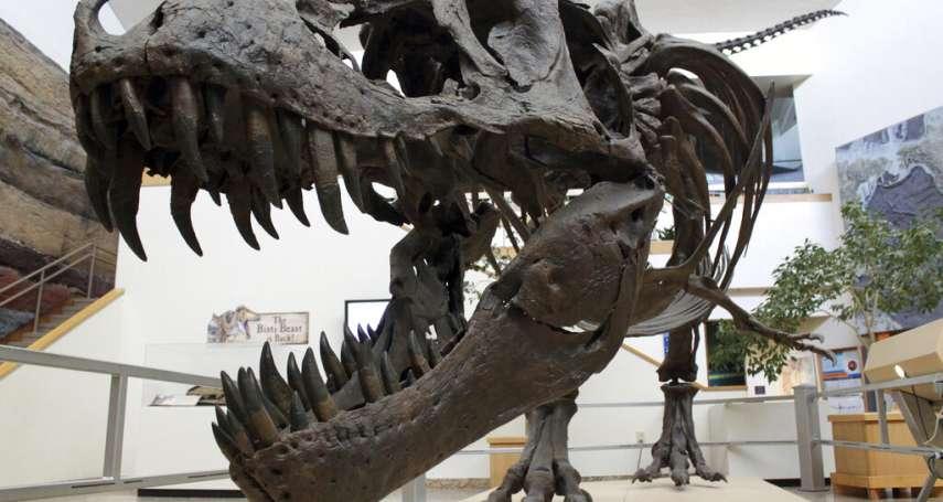 「當恐龍面臨世末日……」科學家利用化石證據重建6500萬年前物種大滅絕景象!