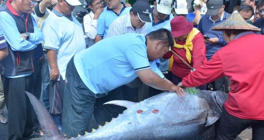 屏東黑鮪魚季「第一鮪」出爐!船長僅7年資歷 創從漁時間最短捕獲紀錄