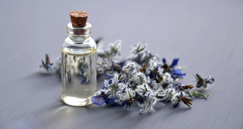 【跟香味有關的兩三事】兩款絲柏花香香水:  Coco Mademoiselle v.s. Chance