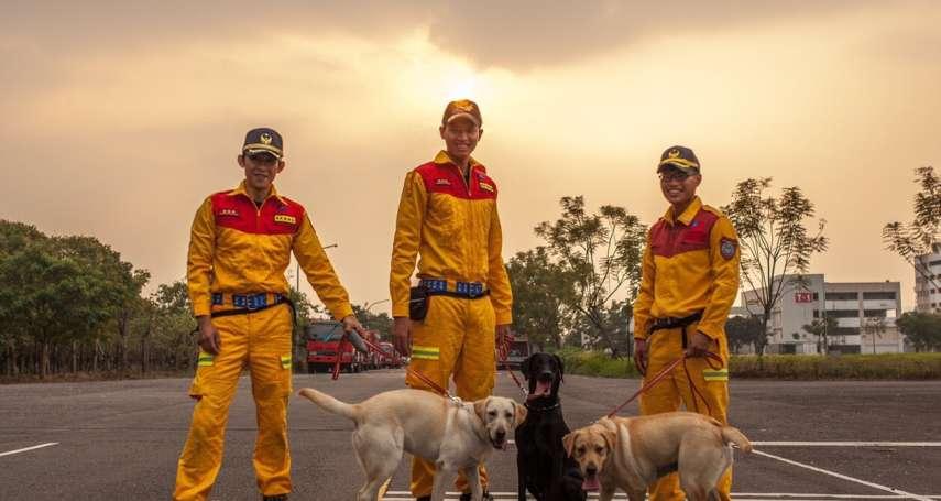消防新戰力!竹市2搜救犬通過培訓初試 25日民安演習首亮相