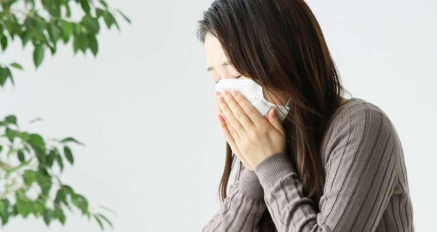 換季時常打噴嚏、流鼻水,其實是「寒氣」趁虛而入!中醫師教你6招改善過敏體質,不再徹夜難眠