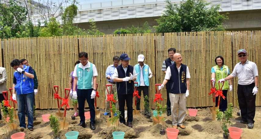 中市推植樹計畫 活化空地改善空汙