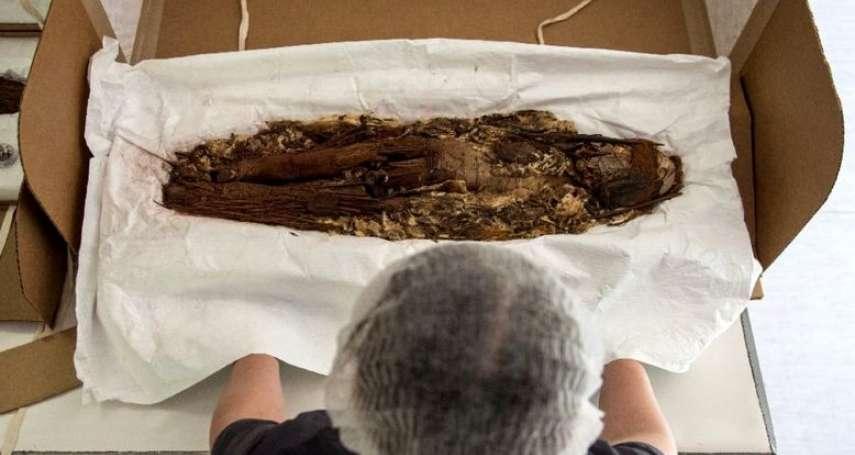 世上最古老的木乃伊不在埃及!切開遺體、填入蘆葦…新克羅人7千年前就有木乃伊 智利爭取列入世遺