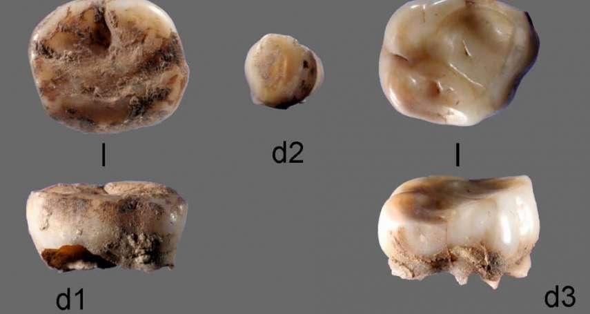 誰是北美洲原住民的祖先?最新研究:俄羅斯西伯利亞神秘古代人可望解開謎團!