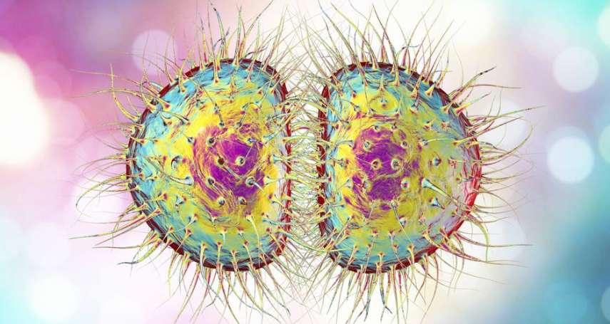 WHO示警:網路約炮很容易,每天百萬人染性病!