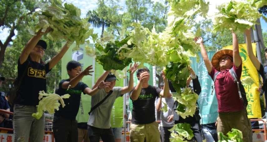 朱淑娟專欄:減緩氣候變遷對農業的衝擊,從保護農地做起