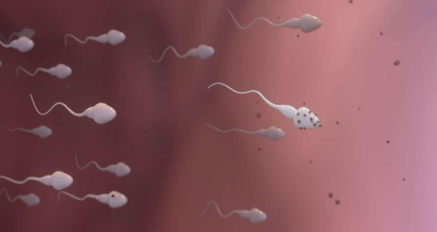 親愛的,蟲蟲不見了!「精子危機」來襲,這部紀錄片告訴你如何讓蟲蟲重拾活力