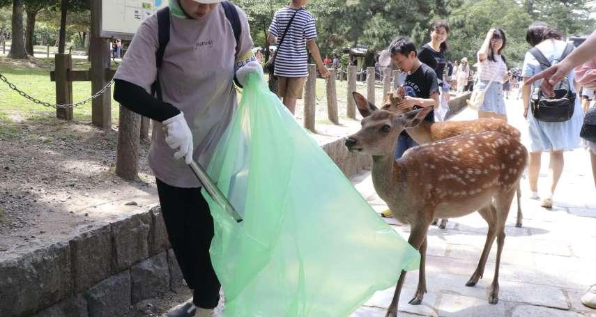 回歸自然!奈良公園少了觀光客 鹿群低頭吃草對鹿餅「不屑一顧」