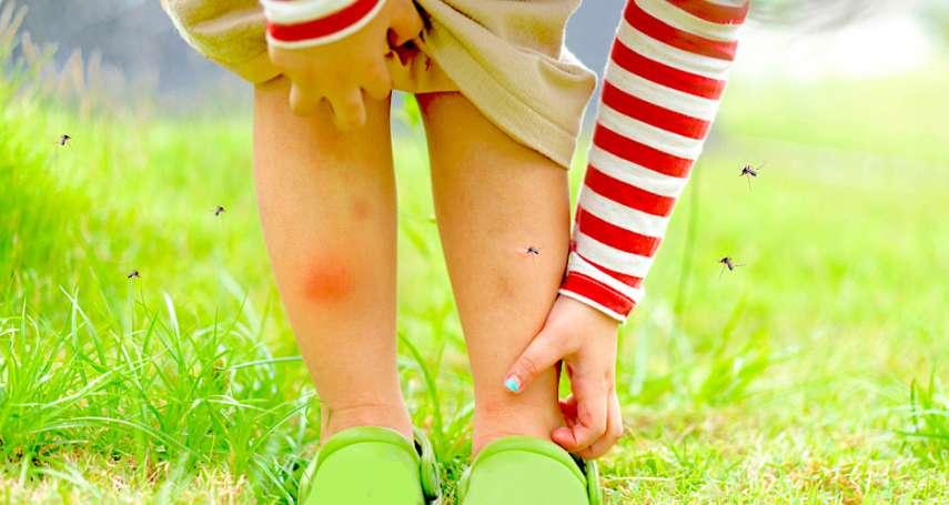 蚊子愛叮酸性體質?醫師傳授防蚊妙招:這六個原因,讓蚊子愛你愛得寸步不離