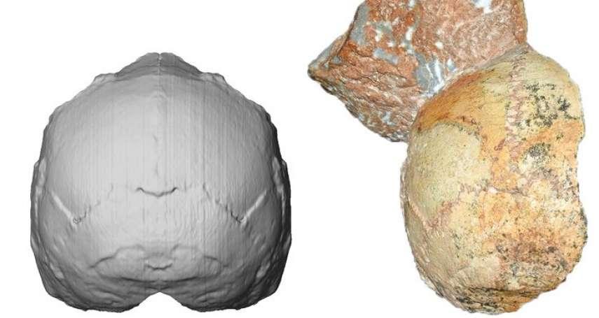 人類離開非洲的最早證據!全世界已知第3古老的智人,21萬年前抵達希臘