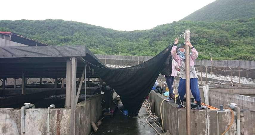 禁止漁船出港 新北農業局防災全面啟動