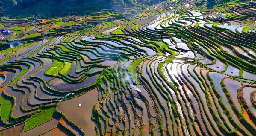 從「地球之癌」到綠水青山——廣西石漠化治理成效居中國前列