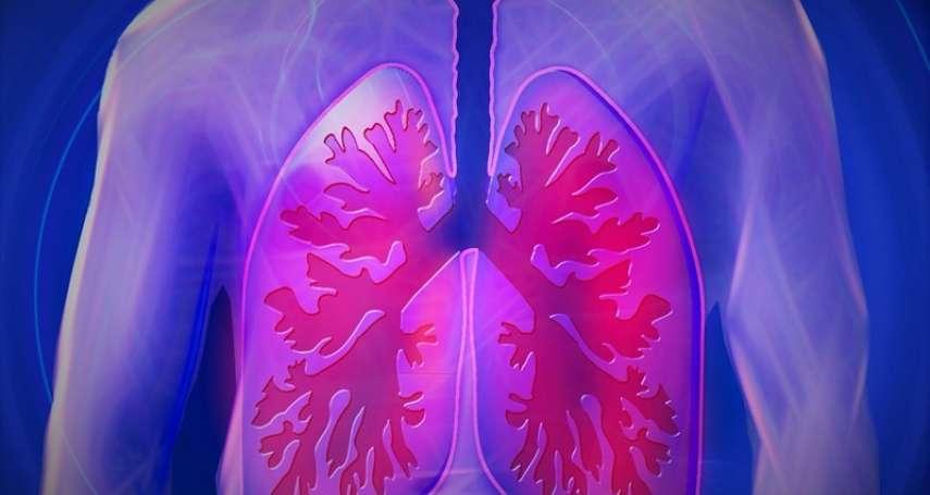 不只肺癌...石綿還可能導致其他數種癌症 潛伏期最長達50年