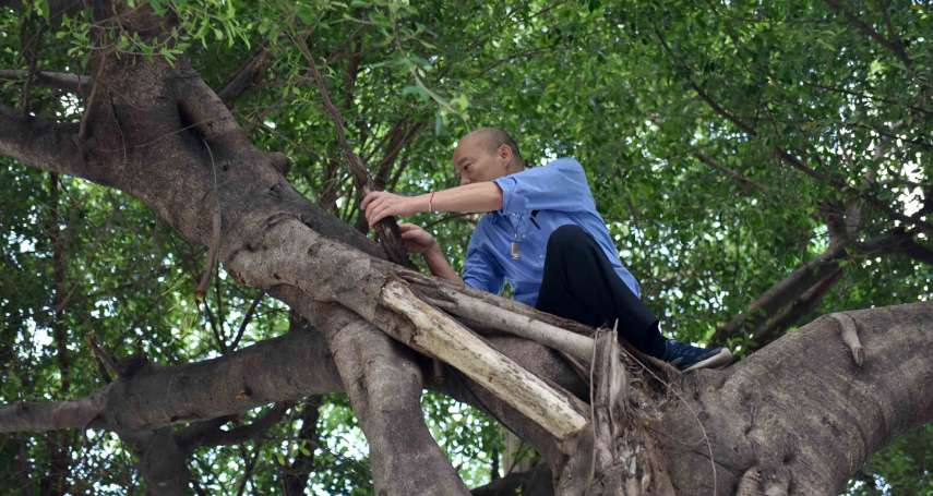 「韓國瑜從樹上下來後,繼續批行政院盯他」  谷辣斯:每次開火升高藍綠對抗的都是韓