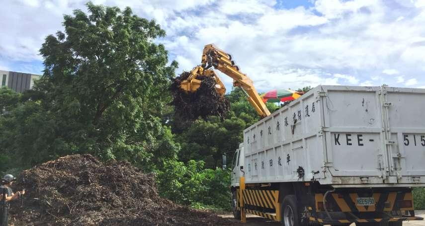 廢材再利用園藝好幫手 中市廢樹枝、木屑免費領取