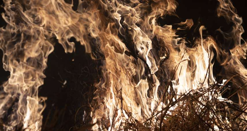 鼓勵火耕讓山老鼠有機可趁、雨林土地遭侵占 巴西亞馬遜野火問題難撲滅