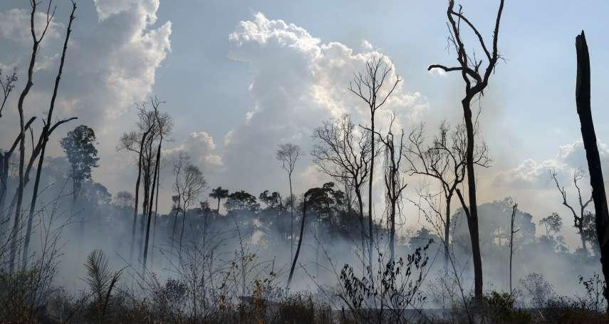 被火焰吞噬的森林,可能要數百年才能復原!專家道出亞馬遜森林大火引發的生態災難