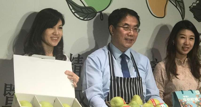 觀點投書:不靠ECFA,台南如何讓農業出口成長