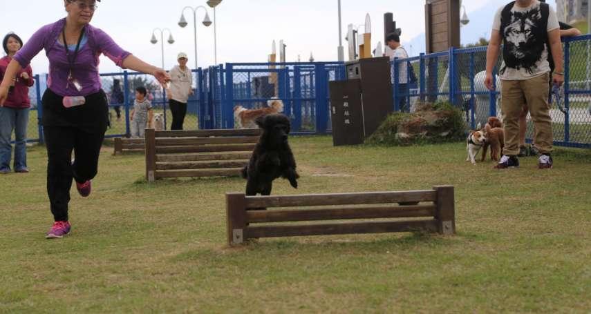 新北「毛寶貝動健康&世界狂犬病日」 帶毛寶貝運動拿好康
