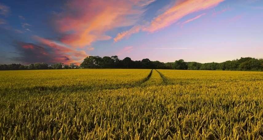 彭作奎專文:「農地正義」的棍子與紅蘿蔔
