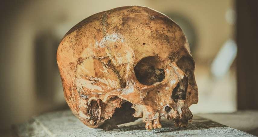 老祖宗也愛喝牛奶?英國考古團隊在古人牙齒發現祕密:6000年前新石器時代「農民」可能就會喝牛奶、吃起司!