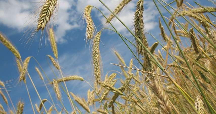 提到農業,你腦中還是「鋤禾日當午,汗滴禾下土」嗎?其實現在已是「智慧農業」的天下