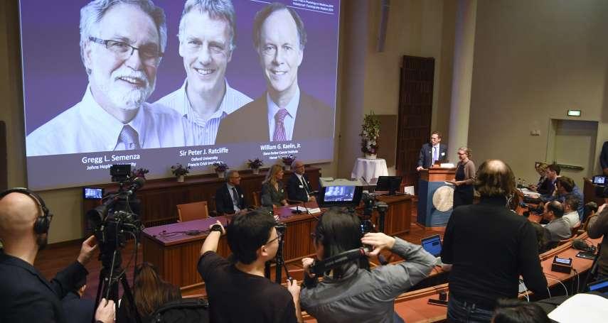 2019年諾貝爾醫學獎》解開細胞運用氧氣之謎 美國、英國3學者共享殊榮