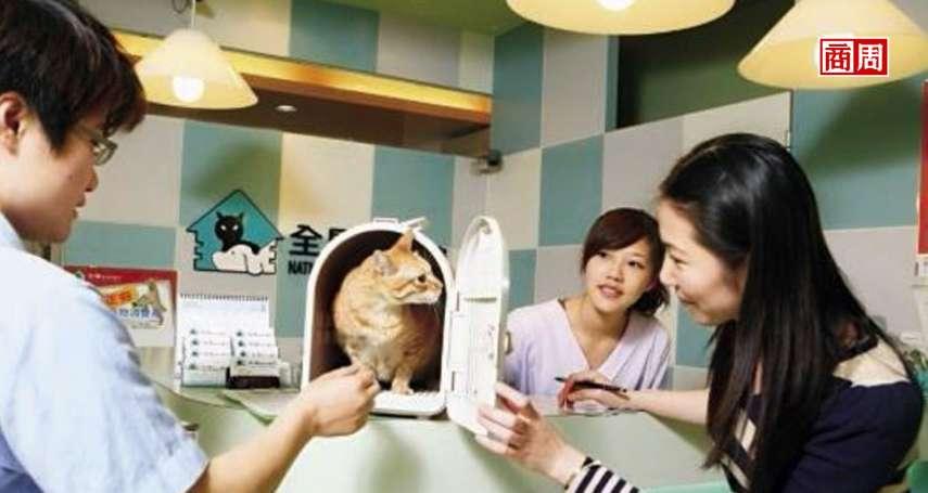 台灣寵物將比小孩多,富邦、新光等9家業者搶攻,寵物險大復活!3大關鍵喚醒50億沉睡市場