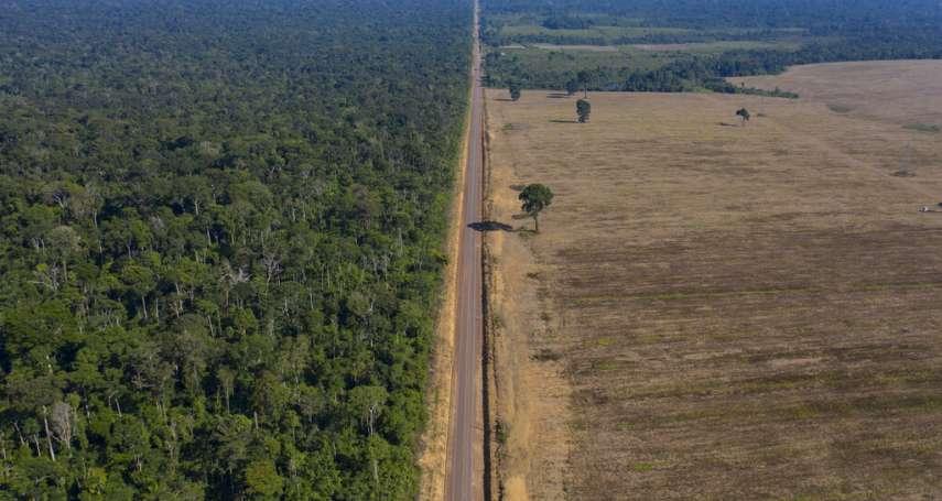 世界最大雨林,開發它或保護它? 巴西總統縱容濫墾濫伐,「地球之肺」走上存亡十字路口