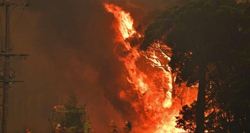 是天災更是人禍!澳洲野火連月肆虐 重災區警方指控24人蓄意縱火