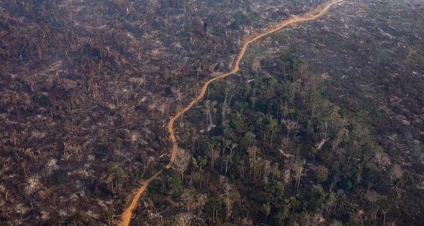 消逝中的地球之肺》過去十年間,8400萬座足球場大的亞馬遜雨林消失在地球上
