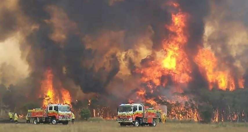 台北送暖!澳洲野火災後重建募款 不到3小時募得逾百萬元