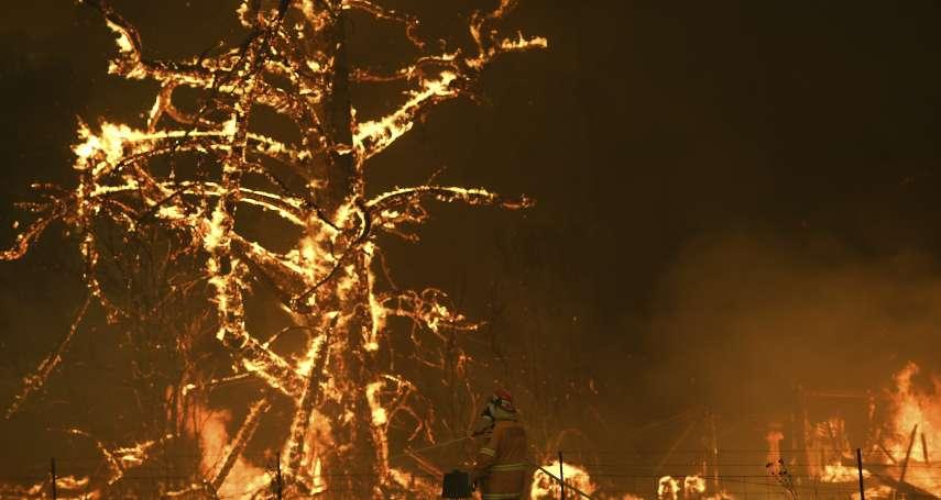 澳洲野火損失到底多慘重?燒掉3個台灣、都市瀰漫毒霧…恐損失9百億觀光收入