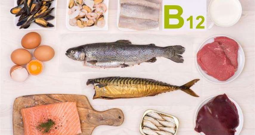 長期素食者該如何補充蛋白質?小心吃太多「肉替代品」反而吃出一身病!