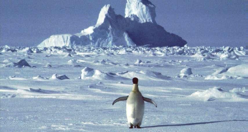 地球在發燒:南極洲首見熱浪!恐釀生態浩劫、加速海平面上升