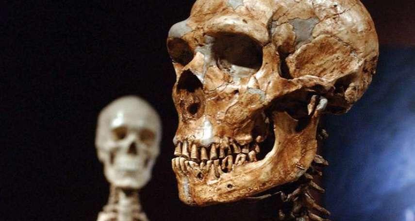 100萬年前的幽靈人種!美國期刊最新研究:西非人DNA分析發現神秘祖先存在