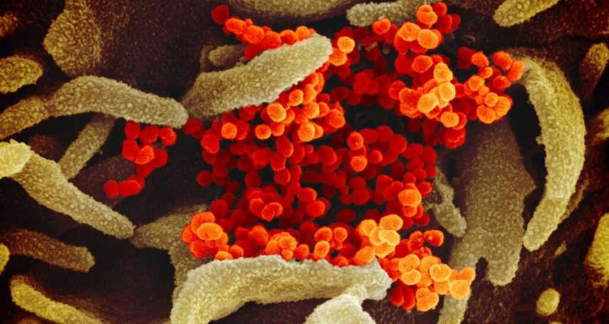 武漢肺炎風暴》最新研究:病毒在物體表面最長可存活9天!這3種居家清潔用品都能有效消毒