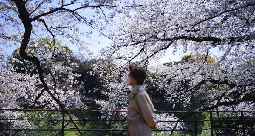 日本佛系防疫下半場為何崩盤?風俗店、盛開櫻花與守舊官僚,成了最大防疫破口