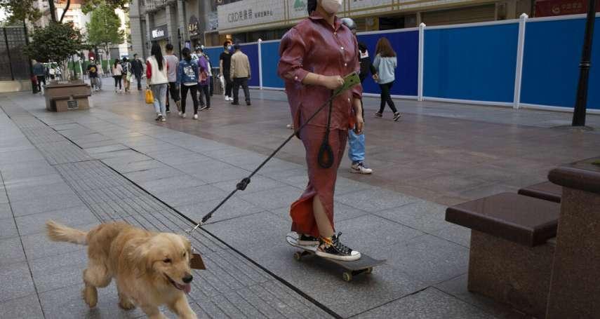 中國動物福利大躍進》農業部首稱「狗為人類伴侶」不宜食用,深圳率先禁食貓狗