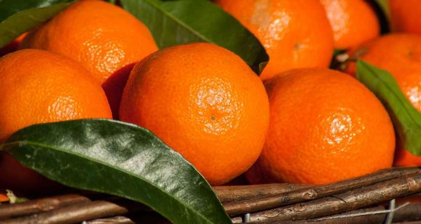 網路偏方「久咳不止吃烤橘子」真的有療效嗎?中醫師、營養師這樣說