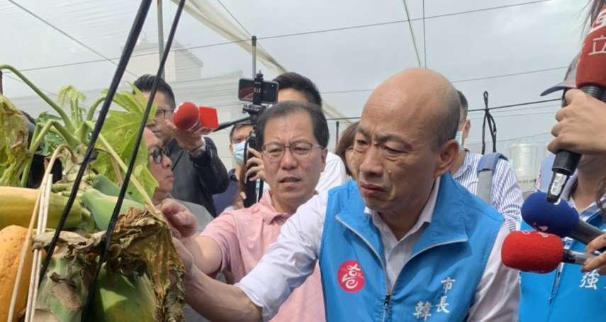 罷韓投票日赴美濃視察木瓜農損 韓國瑜指示相關局處盡速協助農民