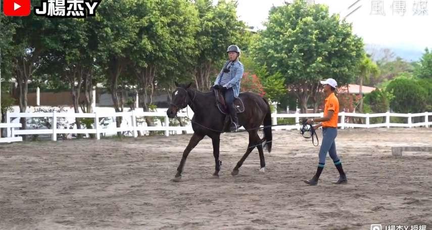 騎馬馳騁沙場竟有健身功效?職人帶你一窺馬的食衣住行奧秘,輕鬆辨別馬兒超療癒肢體語言【影音】