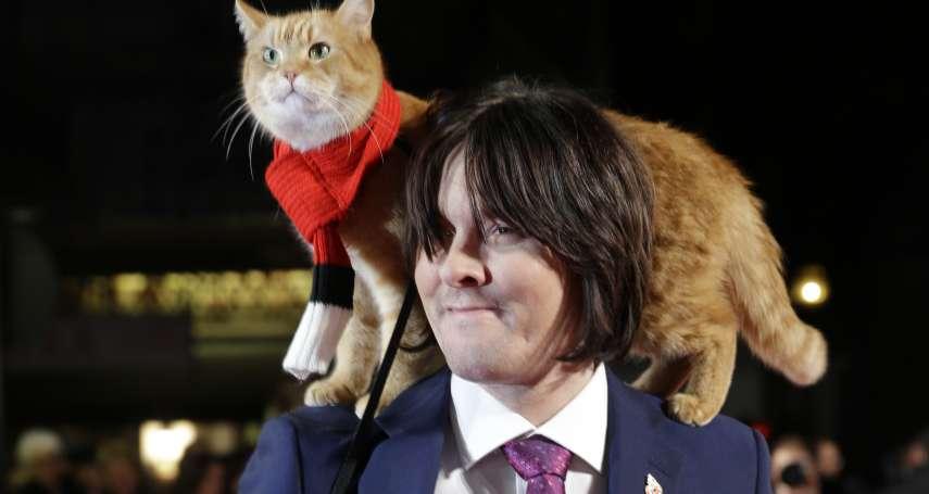 他們的故事感動全世界!英國「街貓Bob」結束傳奇「貓」生 主人悼:鮑伯拯救了我的人生