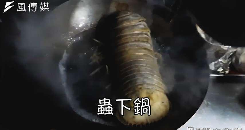 宛若異形的「大王具足蟲」居然能吃?挑戰超驚悚美食,隱藏在恐怖外表下的竟是絕美滋味【影音】