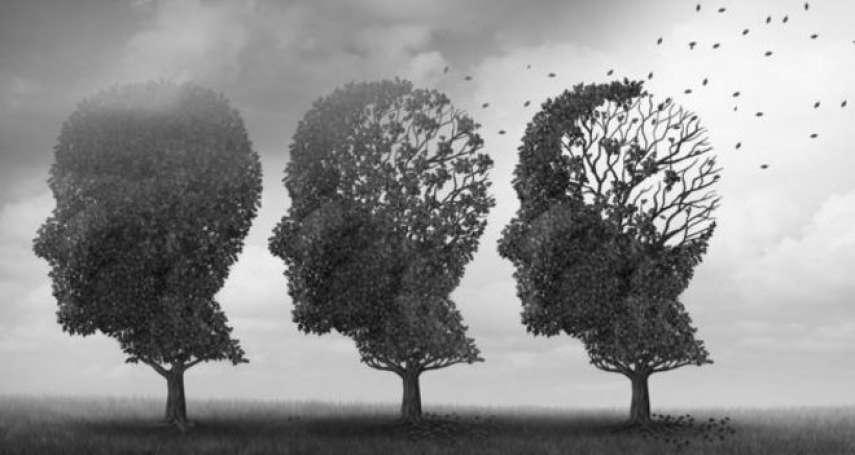 歐美老年男性不易失智之謎:罹病風險每10年下降13%,醫學專家忙著找原因
