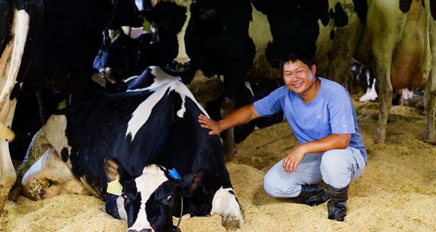 從動物福利出發經營畜牧業!視乳牛如「女兒」的酪農廖皎邦
