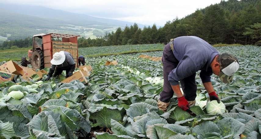 要外籍勞工解決缺工問題,卻對外國人差別待遇?台灣也準備好了嗎?