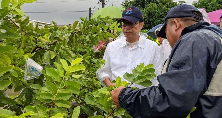 陳其邁上任「緊緊緊」行程滿檔 自家議員:比照監督韓國瑜的標準辦理