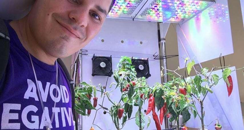 在太空種菜到底有多難?太空人在成功種出生菜萵苣後,決定挑戰更難食物:辣椒!